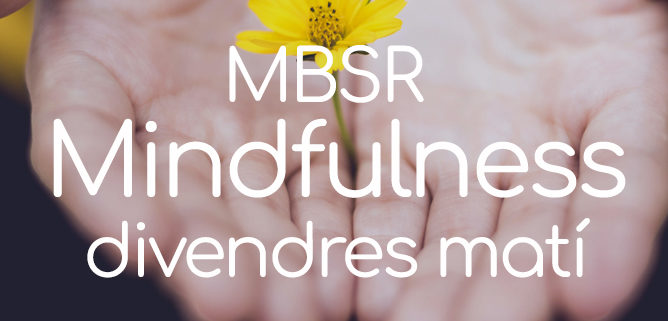 espai-teos-mindfulness-granollers-mbsr