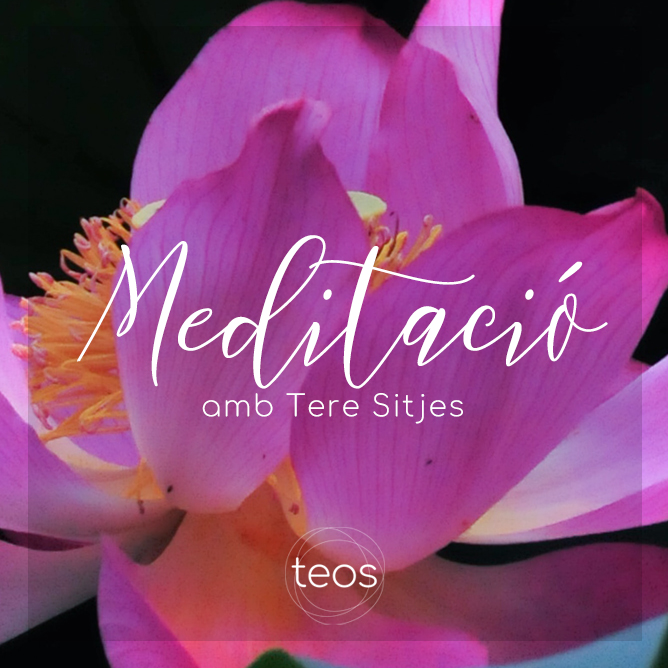 Tere Sitjes - Teos - Mindfulness