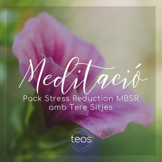 Pack Stress Reduction MBSR